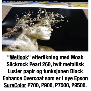 "Moab Slickrock Metallic Pearl 260, 60""x 30,5 rull, Bestillingsvare"