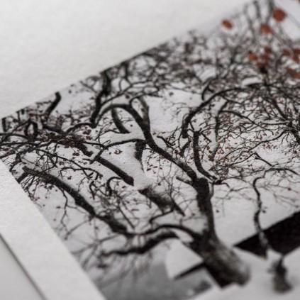 """Moab Moenkopi Kozo 110, 13""""x19"""", 10-ark, japansk kunstfotopapir"""
