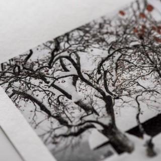 """Moab Moenkopi Kozo 110, 44""""x15m, rull, japansk kunstfotopapir"""