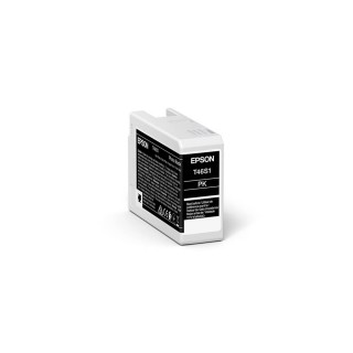 Epson Photo Black, 25 ml, P700, T46S1
