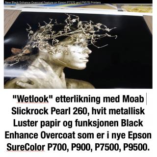 """Moab Slickrock Metallic Pearl 260, 17""""x30,5 rull"""